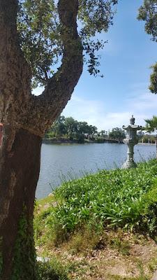 Buddha Eden Garden - part 1