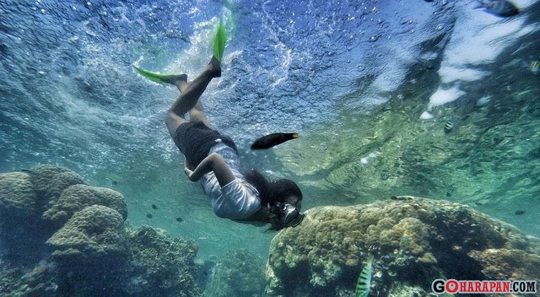 paket wisata satu hari di pulau harapan