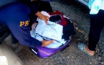 Mulher é presa com 18 kg de agrotóxico em ônibus na Bahia