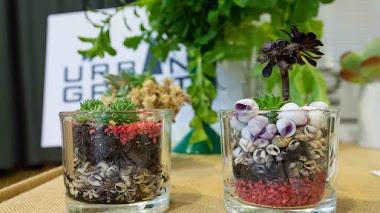 Urban Garden Show. El encanto de los (muy) pequeños jardines urbanos