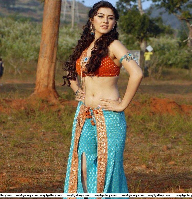 hansika motwani in saree  hot and sexy pics