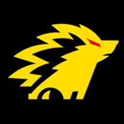 logo dls onic