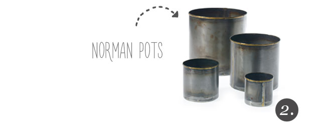 Norman Pot - Industrial Gold Rimmed Pots from Accent Decor