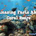 9 Amazing Coral Reef Facts | freaky fact