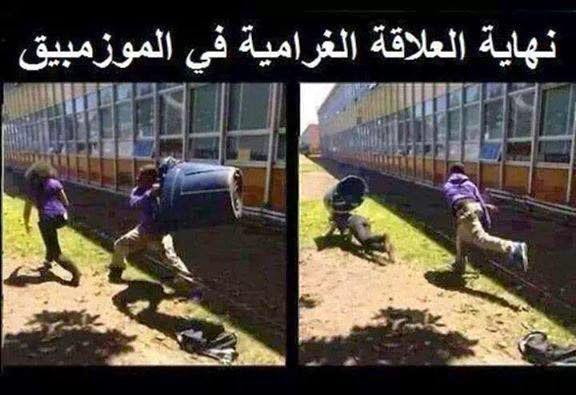 نكت جزائرية فيس بوك