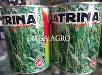 Pertanian On Line, Benih, Bibit, LMGA AGRO, Layanan Cepat, Harga Murah, Jaminan Barang Pasti datang, Dealer, Agen, Distributor