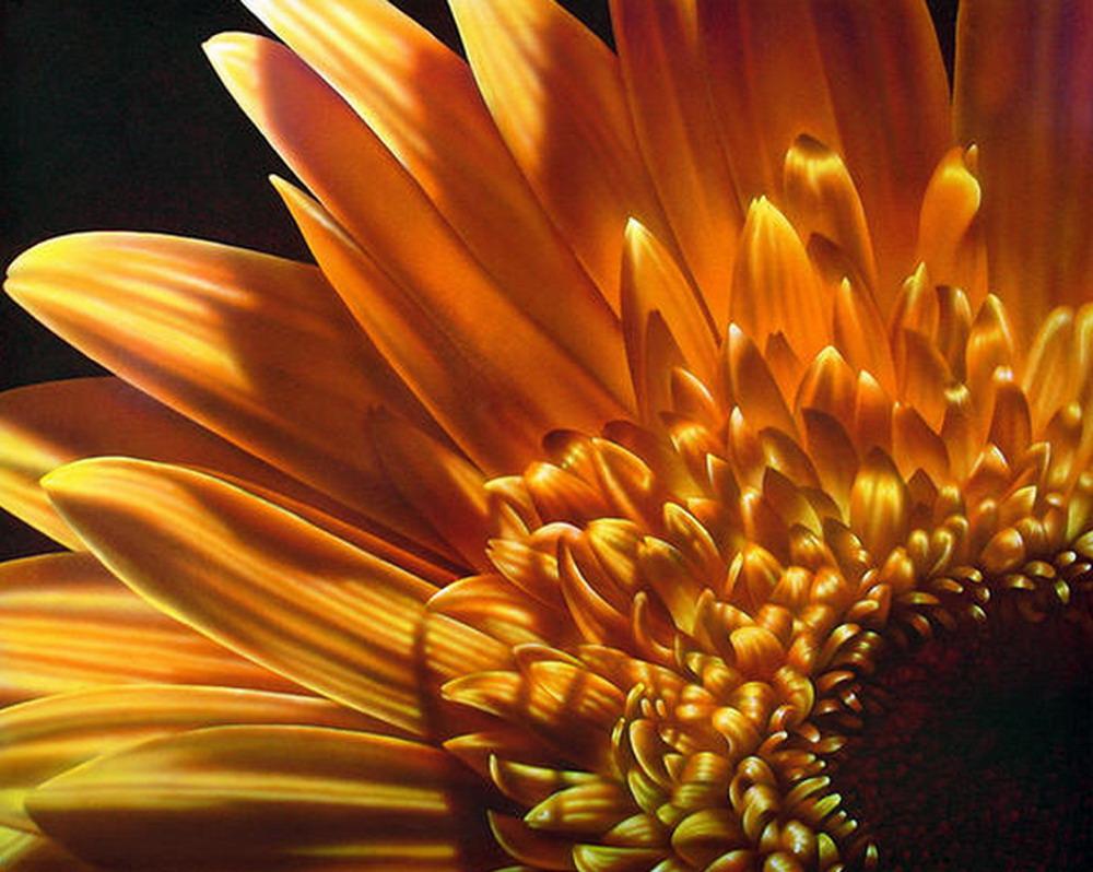 Cuadros pinturas oleos pinturas al leo de flores for Cuadros grandes dimensiones