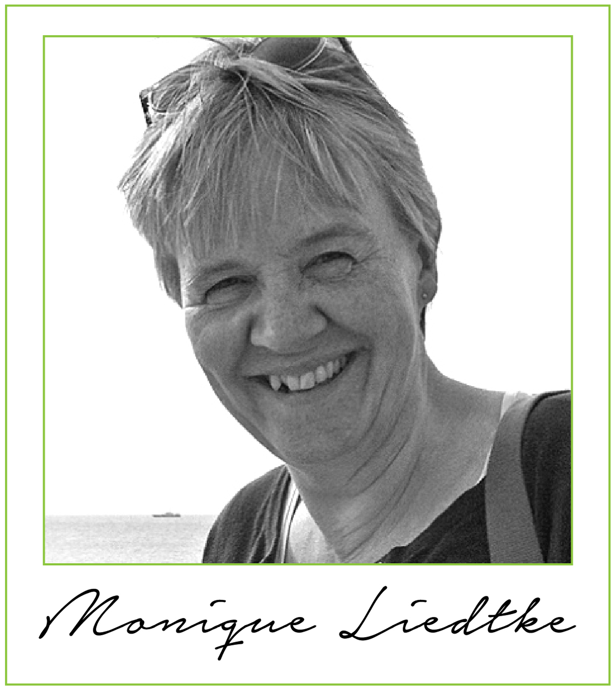 Monique Liedtke 17turtles Design Team Member