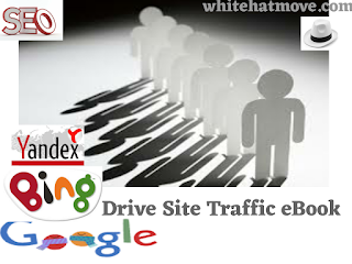 Site Traffic eBook Download