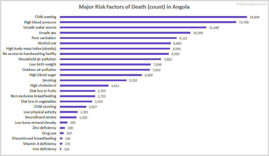 Major Cause of Deaths in Angola (and it's count)