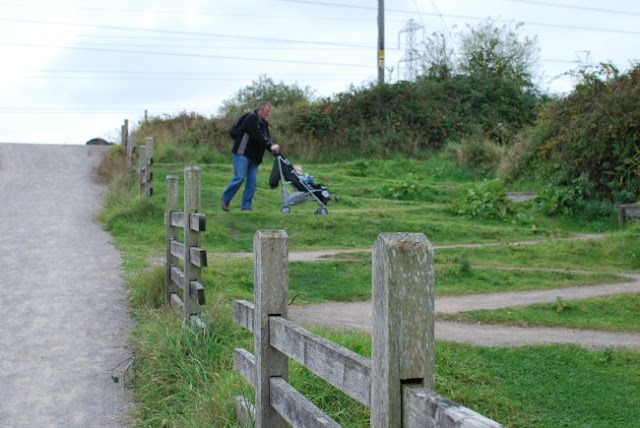 RSPB-Newport-Wetlands-Gravel-path-zig-zag-path-for-buggies-and-wheelchairs
