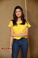 Actress Anisha Ambrose Latest Stills in Denim Jeans at Fashion Designer SO Ladies Tailor Press Meet .COM 0018.jpg