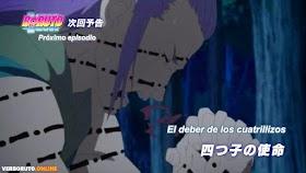 Boruto: Naruto Next Generations Capítulo 165 Sub Español HD