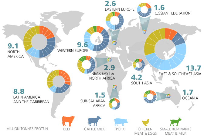 East and Southeast Asia, with about 14 million tonnes of protein