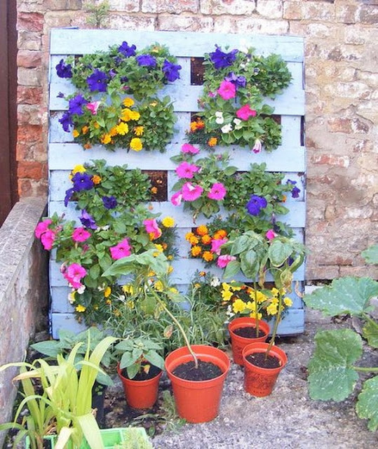 Vertical Gardens Made of Wooden Pallets 4