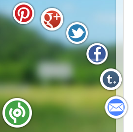 Animated Social Sharing Widget with Cool Hover for Blogger and Wordpress