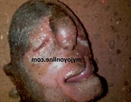 Panic In Ashanti Region As Lamb With 'human Face' Is Born (Photos)
