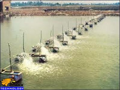 Công ty cung cấp thiết bị xử lý nước thải chế biến thủy hải sản - Mục tiêu ngành thủy sản ở nước ta