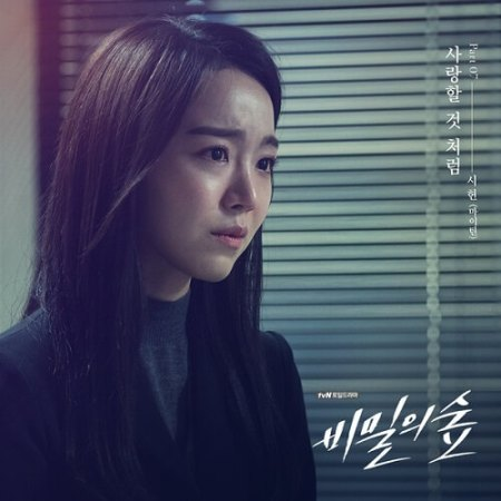 Lyric : Xi Heon (시헌) - As If To Love (사랑할 것 처럼) (OST. Secret Forest)
