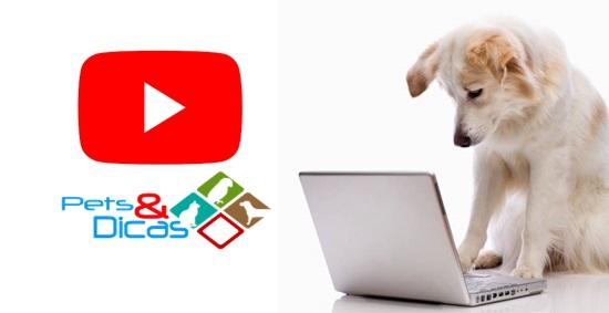 Pets e Dicas no Youtube