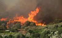 Ολονύχτια μάχη με τις φλόγες στη Β. Ελλάδα - Αγωνιούν οι κάτοικοι της Κασσάνδρας