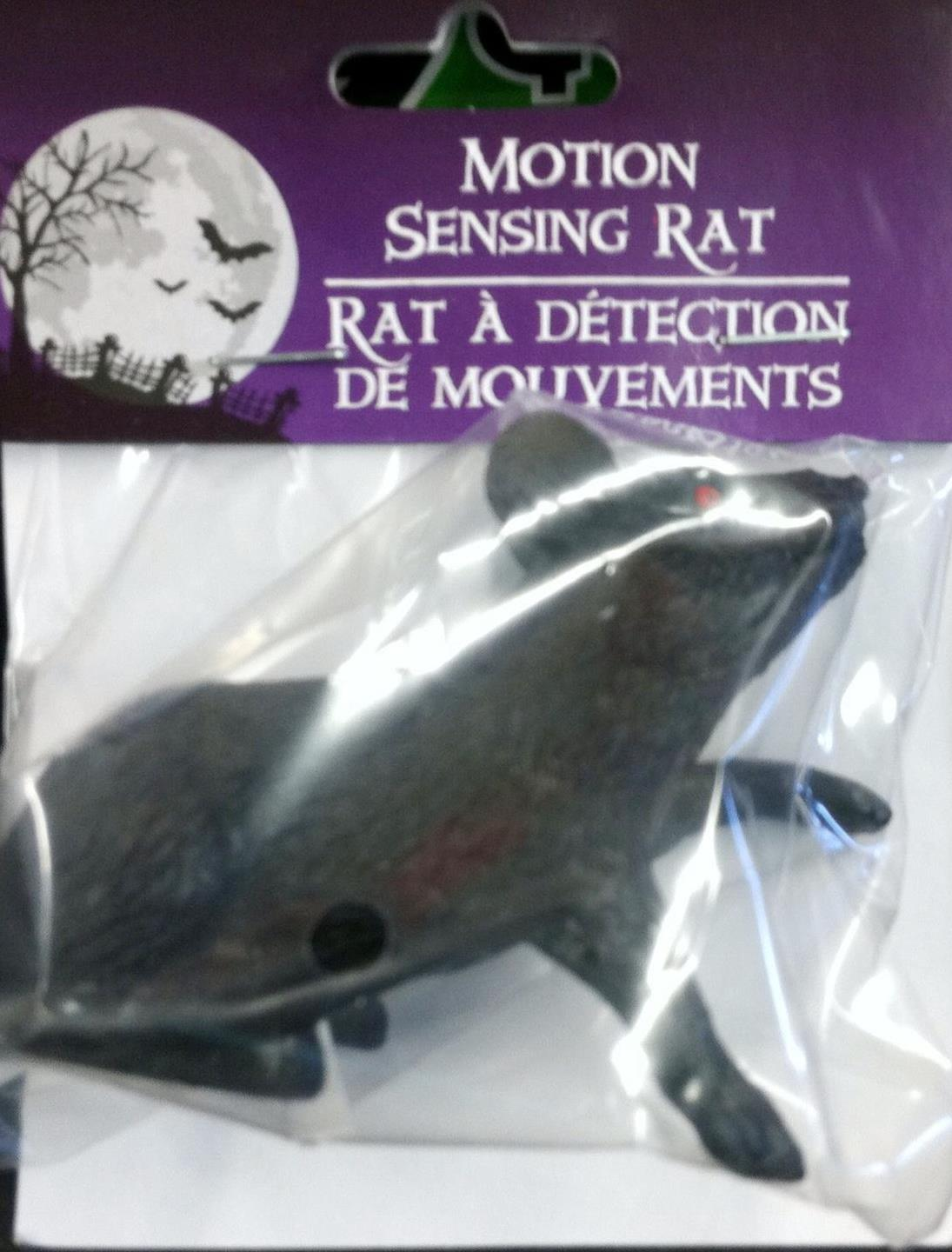 http://www.dollartree.com/catalog/search.cmd?form_state=searchForm&keyword=rat