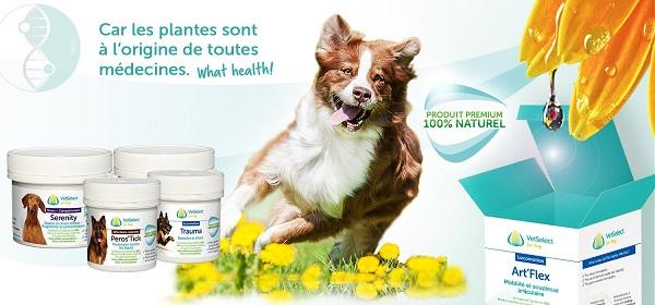 Loenlab des Produits naturels pour chien et cheval