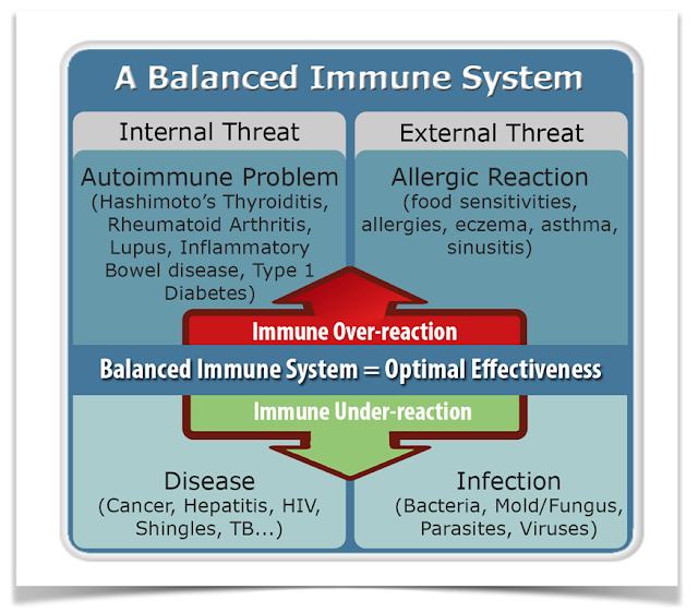 bilancio-sistema-immunitario