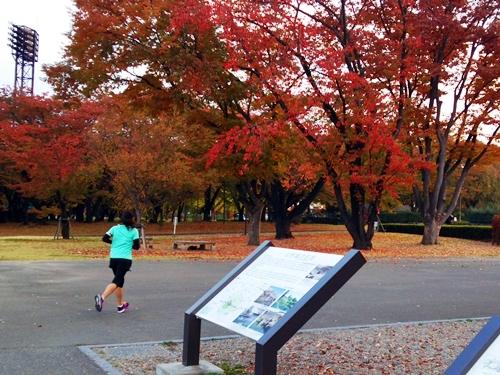霞城公園・城本丸前から東門方面へ