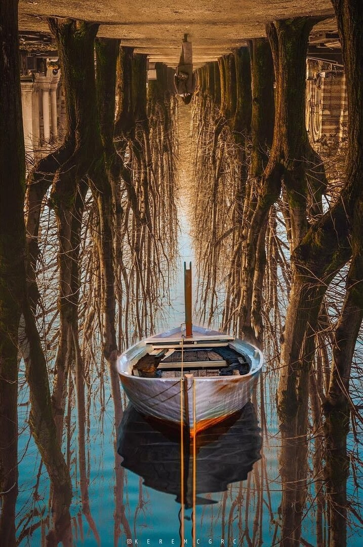 02-Rowing-through-the-Trees-Kerem-Ciğerci-Surrealism-in-Manipulated-Photographs-www-designstack-co