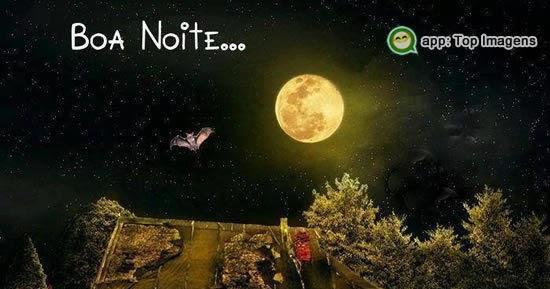 Imagens De Boa Noite Com Frases E Mensagens: Top Imagens De Boa Noite Fofas