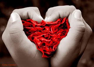 Imagen de dos manos formando un corazón rojo