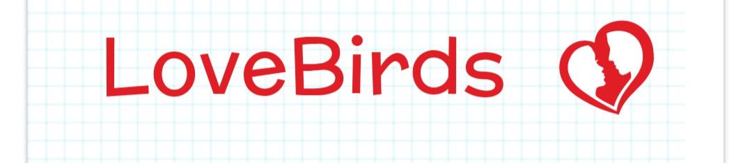 LoveBird Blog