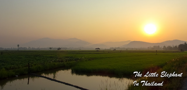 Sunrise over the rice fields near Nam Pat in Thailand