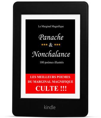 http://www.amazon.fr/Panache-Nonchalance-Marginal-Magnifique-ebook/dp/B00AEY8ULS?ie=UTF8&keywords=le%20marginal%20magnifique&qid=1461177581&ref_=sr_1_6&sr=8-6