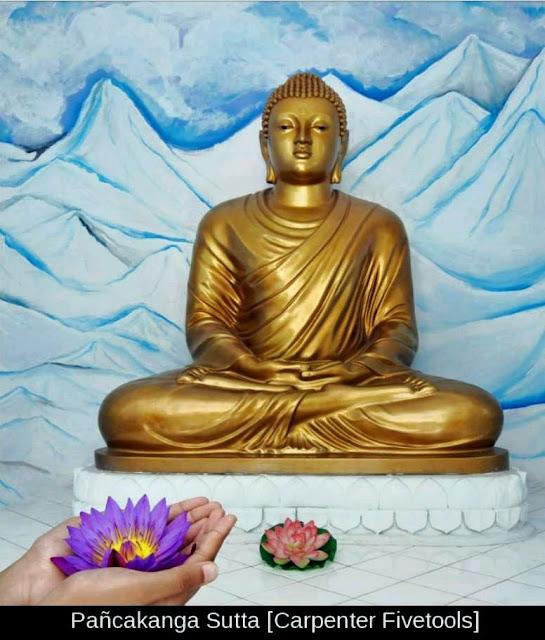 Đạo Phật Nguyên Thủy - Kinh Tăng Chi Bộ - Người đóng xe