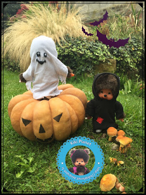 halloween balai monchhichi diana bubbles sorcière chauve souris champignon pumpkin graines