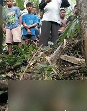 Warga menyaksikan penemuan mayat.