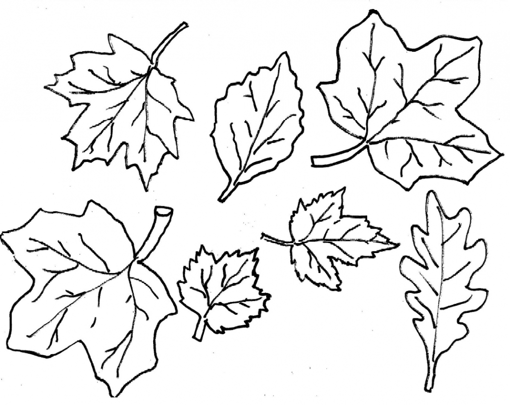 fall leaves coloring pages kindergarten - photo#1
