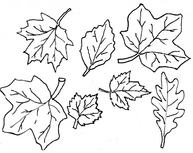 fall leaves coloring pages 2016