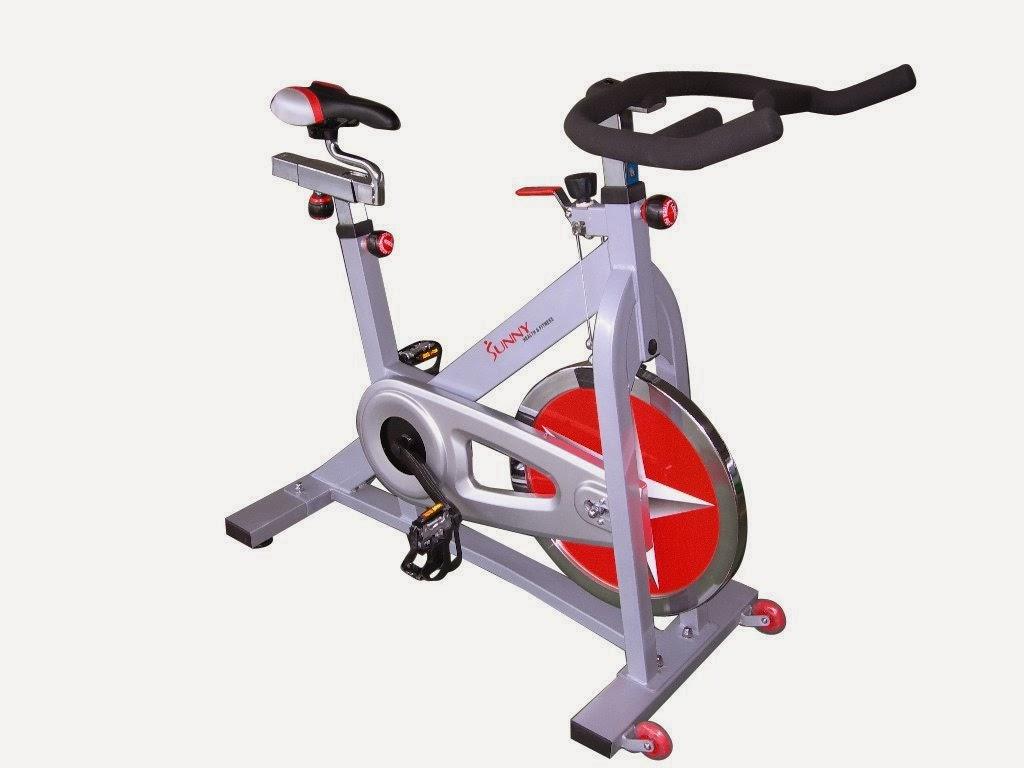 Exercise Bike Zone: Sunny Health & Fitness SF-B901 Pro ...