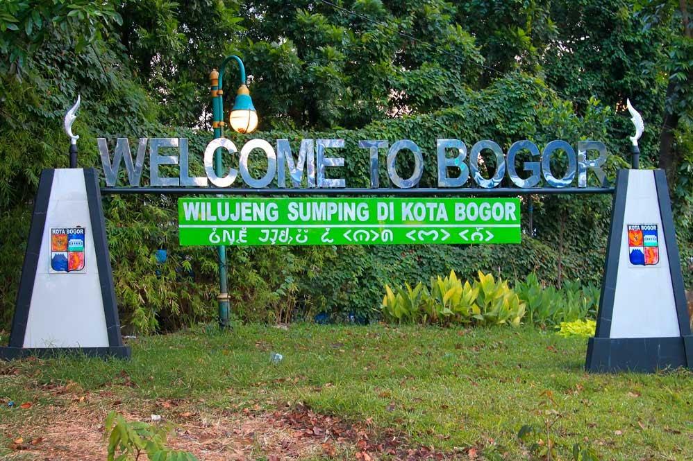Agen QNC Jelly Gamat Kota Bogor
