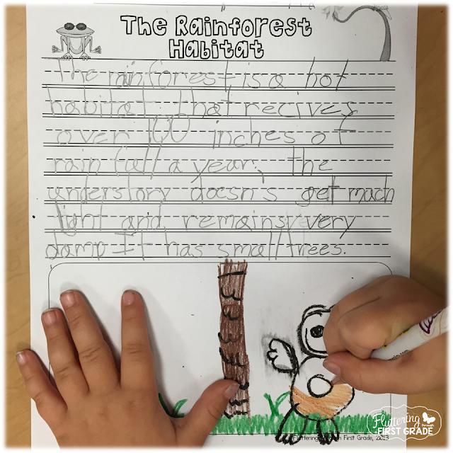 Rainforest habitat lesson plans