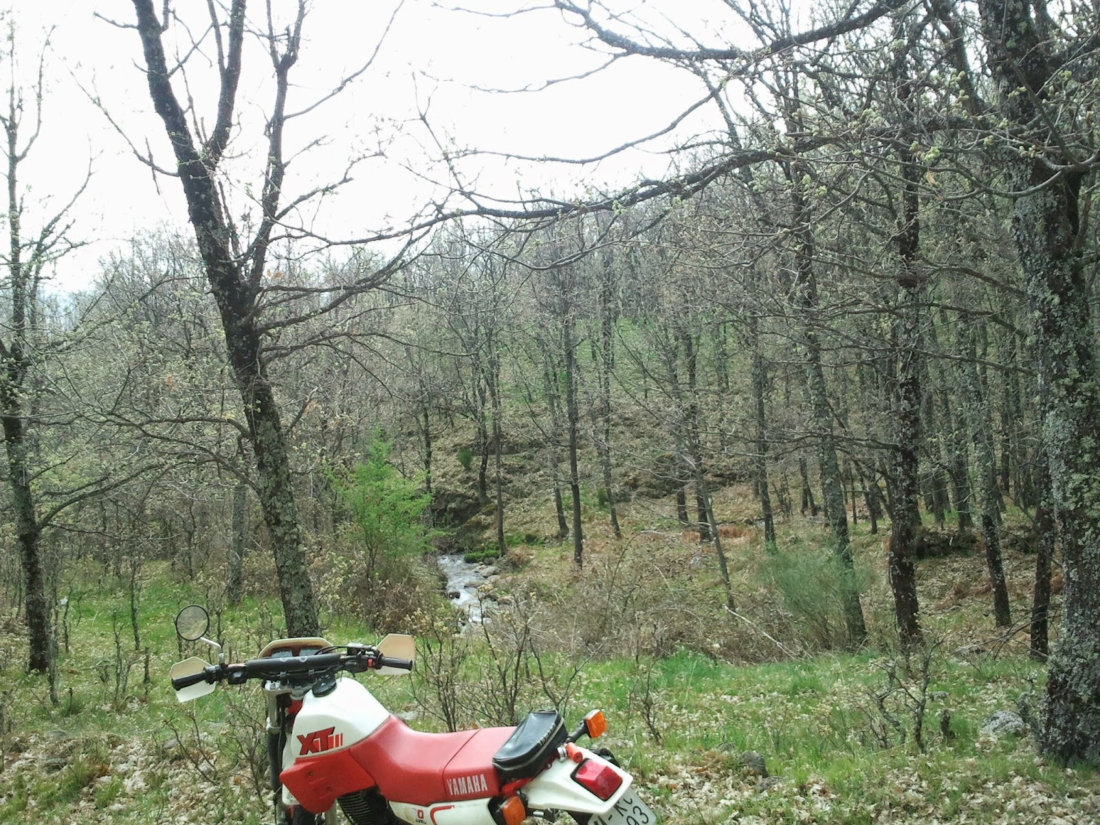 Trail Forever: Easter riding motorbike.Yamaha XT600 1989