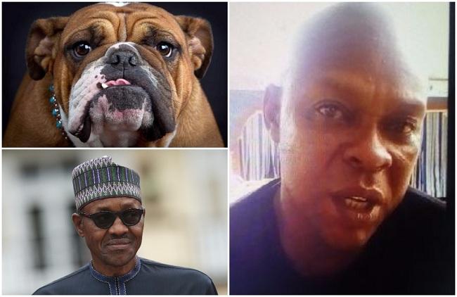 Image result for man who named his dog buhari