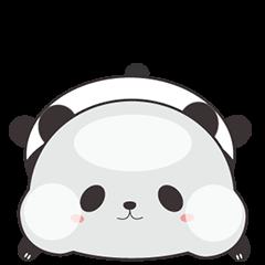 Cute Chubby Panda 3