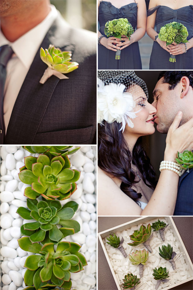 Rented Bliss: Succulents Thrive In Wedded Bliss