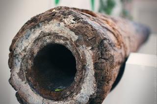 Vízvezeték hálózat fa