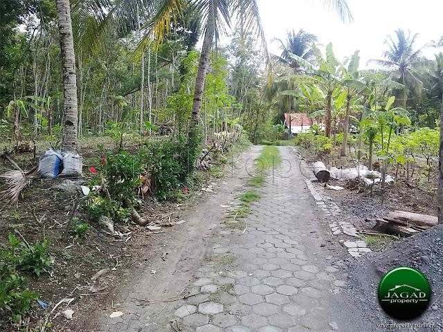Tanah Dijual di Pengasih dekat Kota Wates
