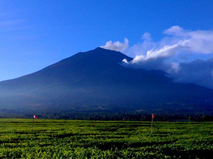 Image result for gunung kerinci wisata